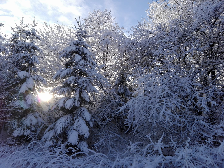 Frankenwald Wintermärchen Baden im Badefass bei Eis und Schnee